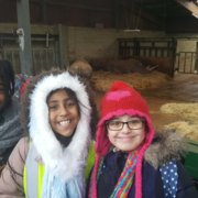 Our trip to Whipsnade Zoo
